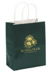 China Custom Gloss Paper Shopping Bags